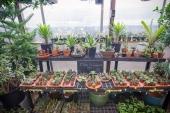Crest Hardware & Garden